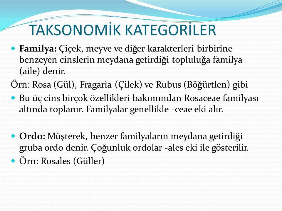 Familya: Çiçek, meyve ve diğer karakterleri birbirine benzeyen cinslerin meydana getirdiği topluluğa familya (aile) denir.