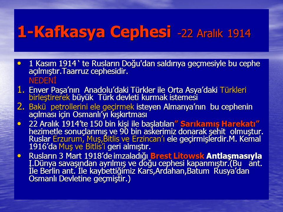 1-Kafkasya Cephesi -22 Aralık 1914