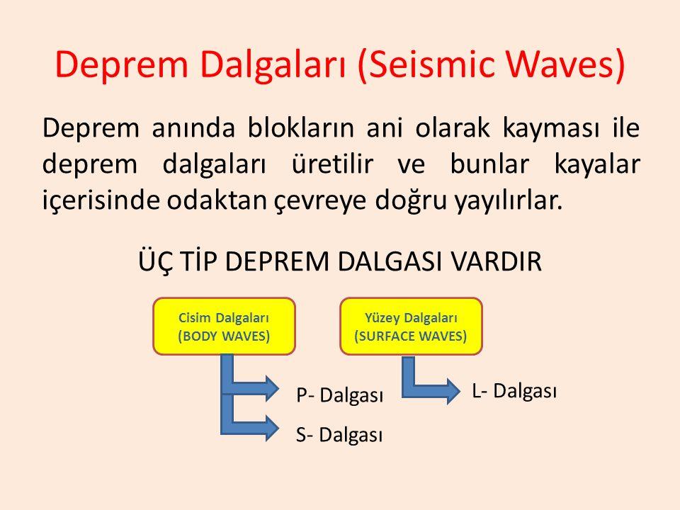 Deprem Dalgaları (Seismic Waves)