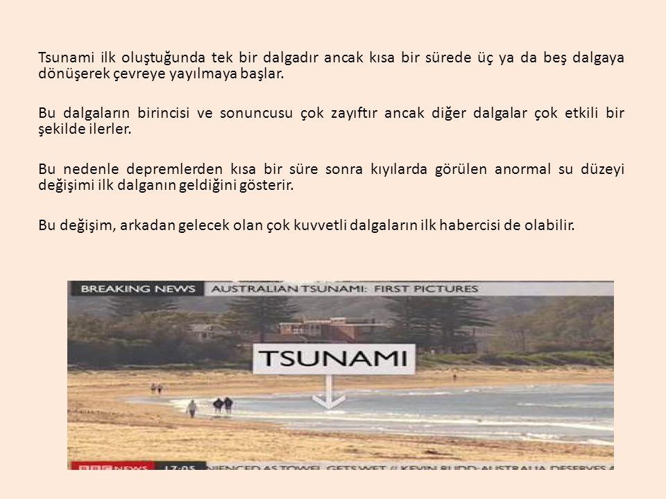 Tsunami ilk oluştuğunda tek bir dalgadır ancak kısa bir sürede üç ya da beş dalgaya dönüşerek çevreye yayılmaya başlar.