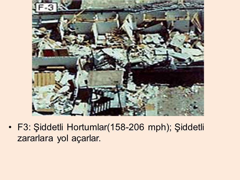 F3: Şiddetli Hortumlar(158-206 mph); Şiddetli zararlara yol açarlar.