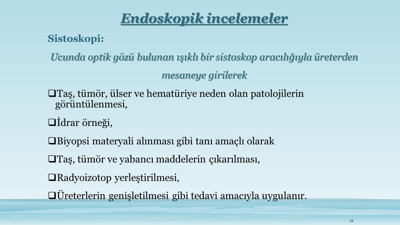 Endoskopik incelemeler