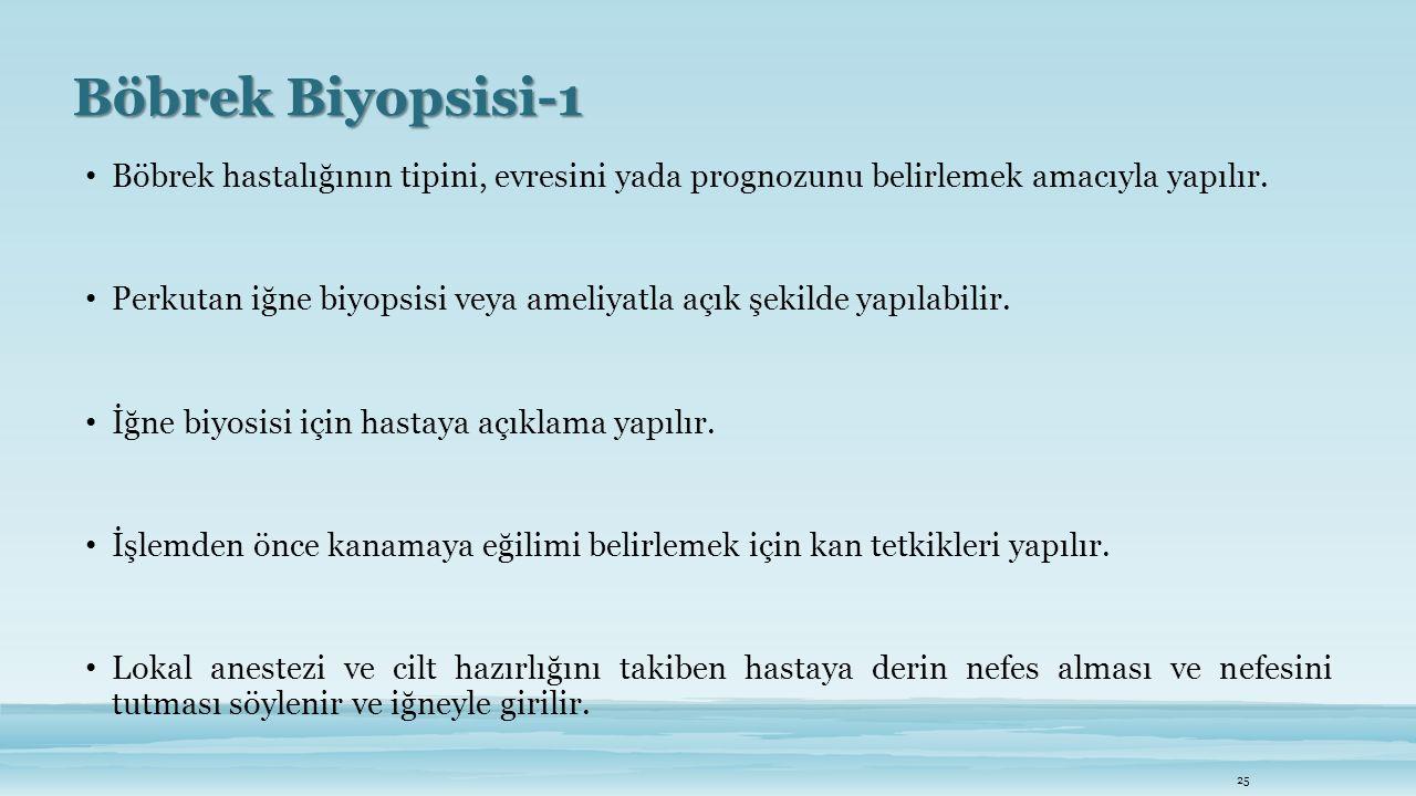 Böbrek Biyopsisi-1 Böbrek hastalığının tipini, evresini yada prognozunu belirlemek amacıyla yapılır.