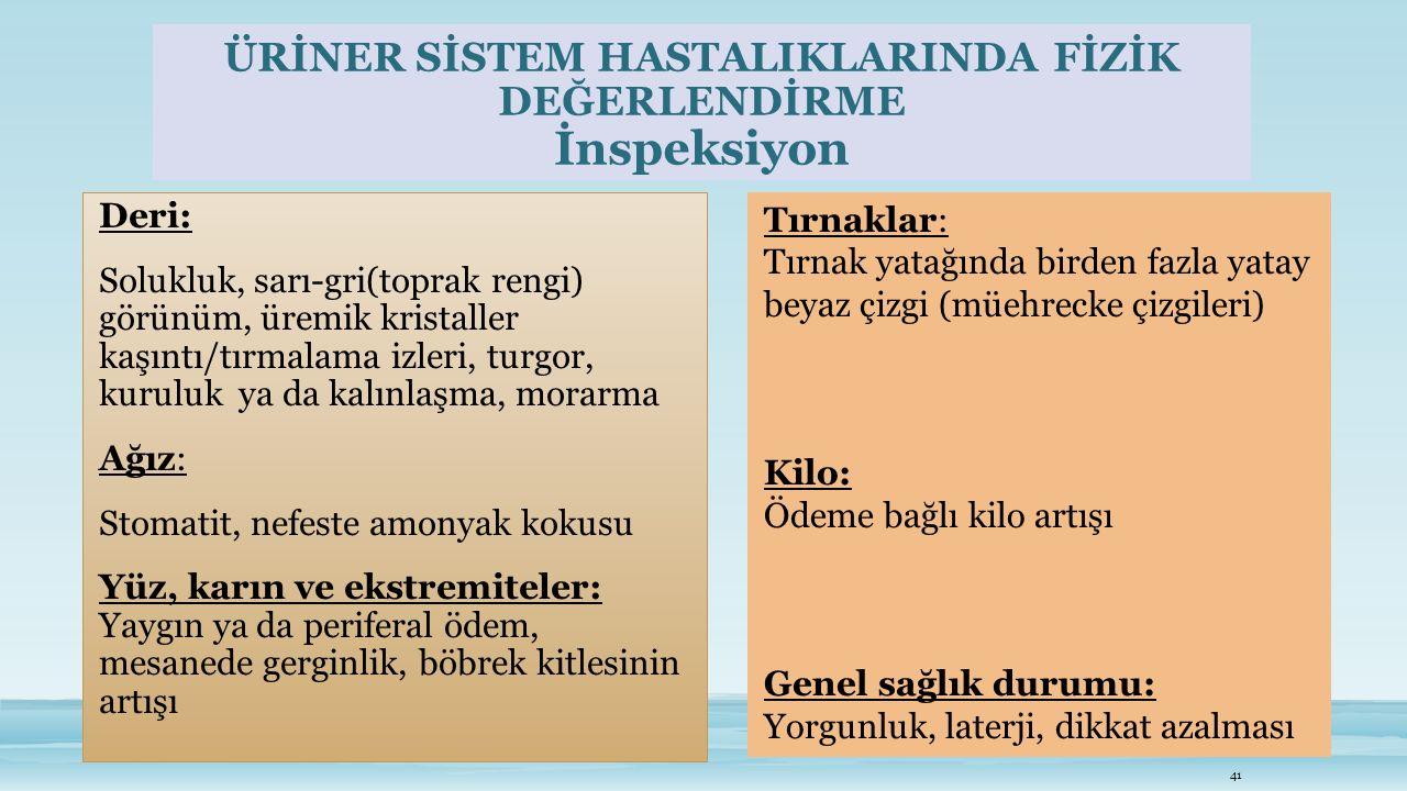 ÜRİNER SİSTEM HASTALIKLARINDA FİZİK DEĞERLENDİRME İnspeksiyon