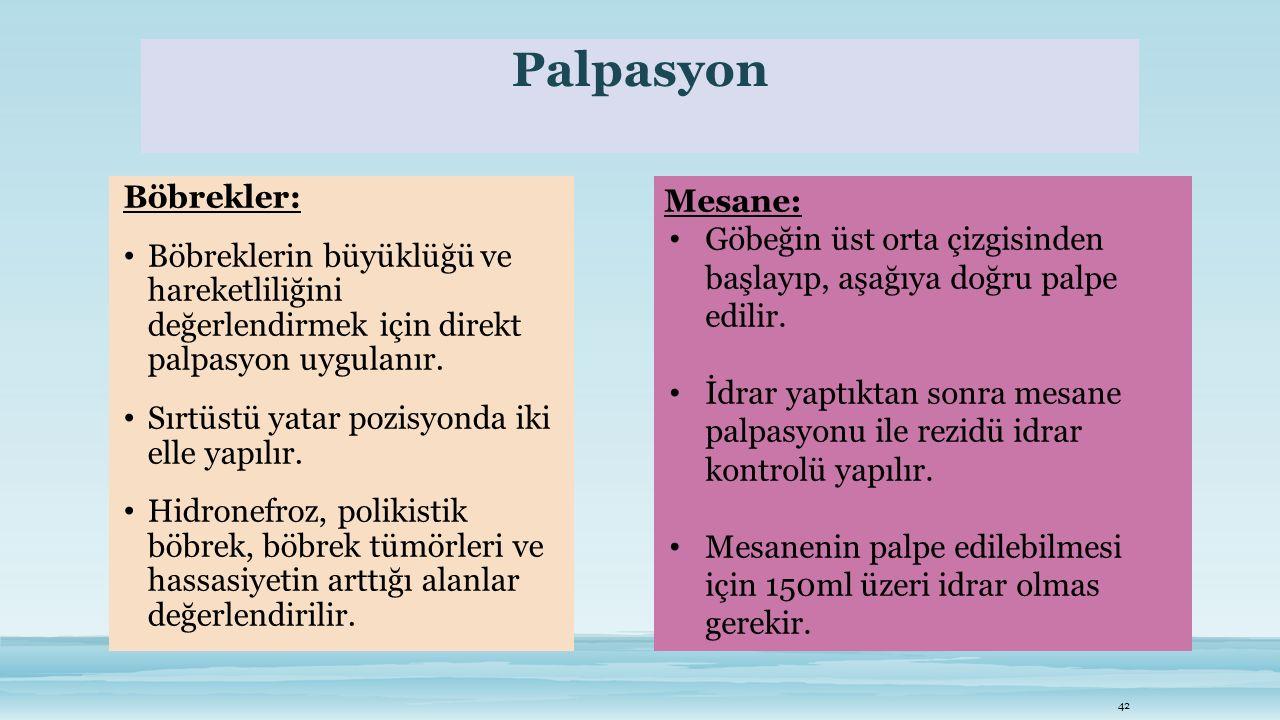 Palpasyon Böbrekler: Böbreklerin büyüklüğü ve hareketliliğini değerlendirmek için direkt palpasyon uygulanır.