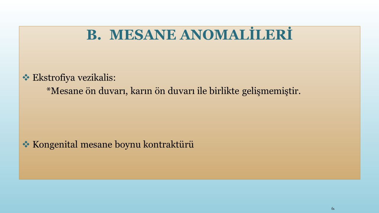 MESANE ANOMALİLERİ Ekstrofiya vezikalis: