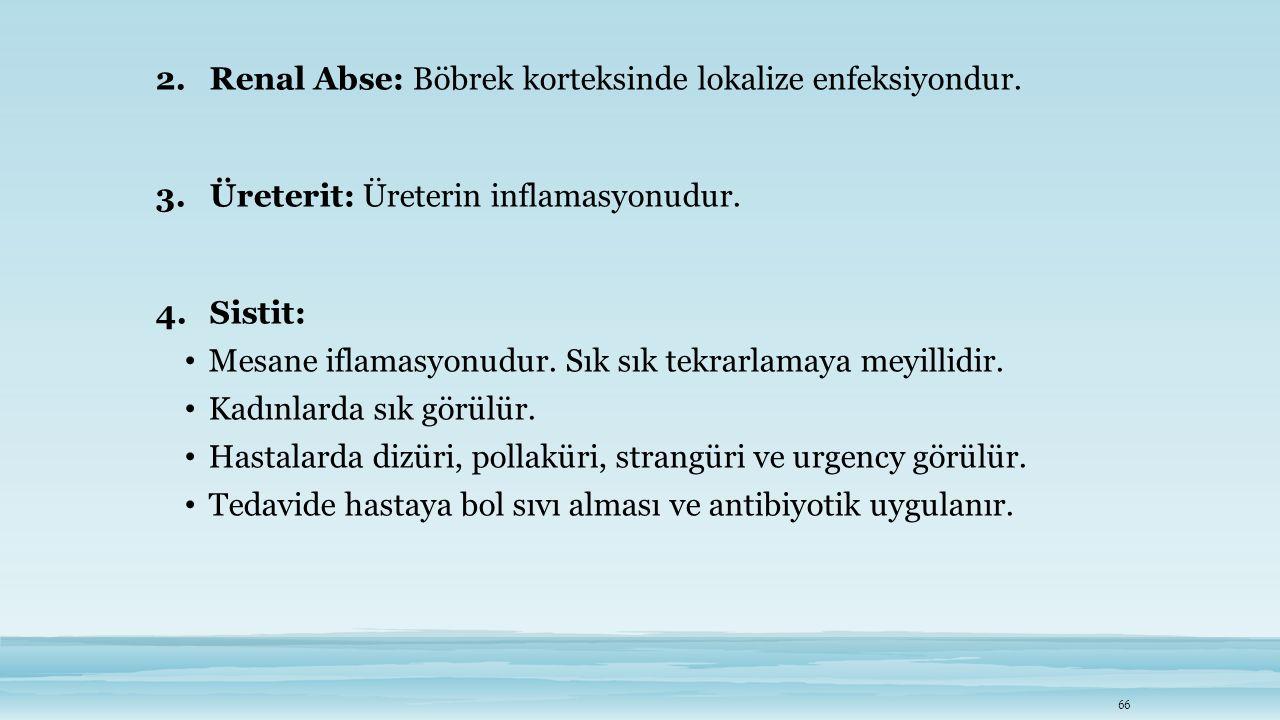 Renal Abse: Böbrek korteksinde lokalize enfeksiyondur.