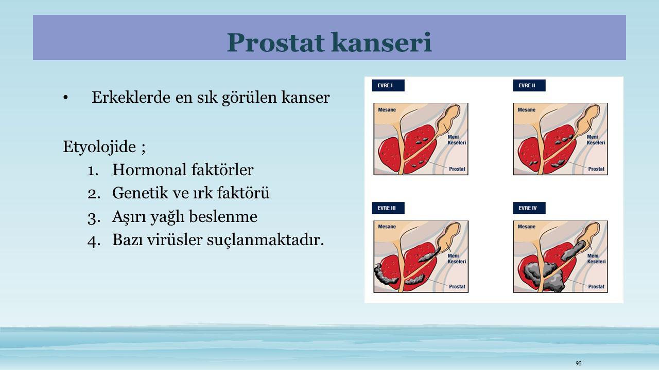 Prostat kanseri Erkeklerde en sık görülen kanser Etyolojide ;