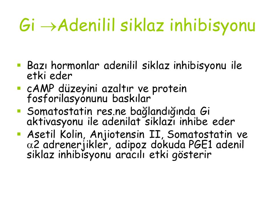 Gi Adenilil siklaz inhibisyonu