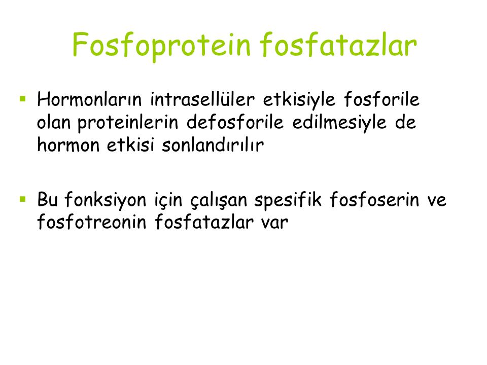 Fosfoprotein fosfatazlar