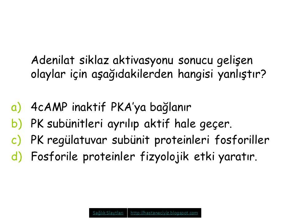 4cAMP inaktif PKA'ya bağlanır PK subünitleri ayrılıp aktif hale geçer.