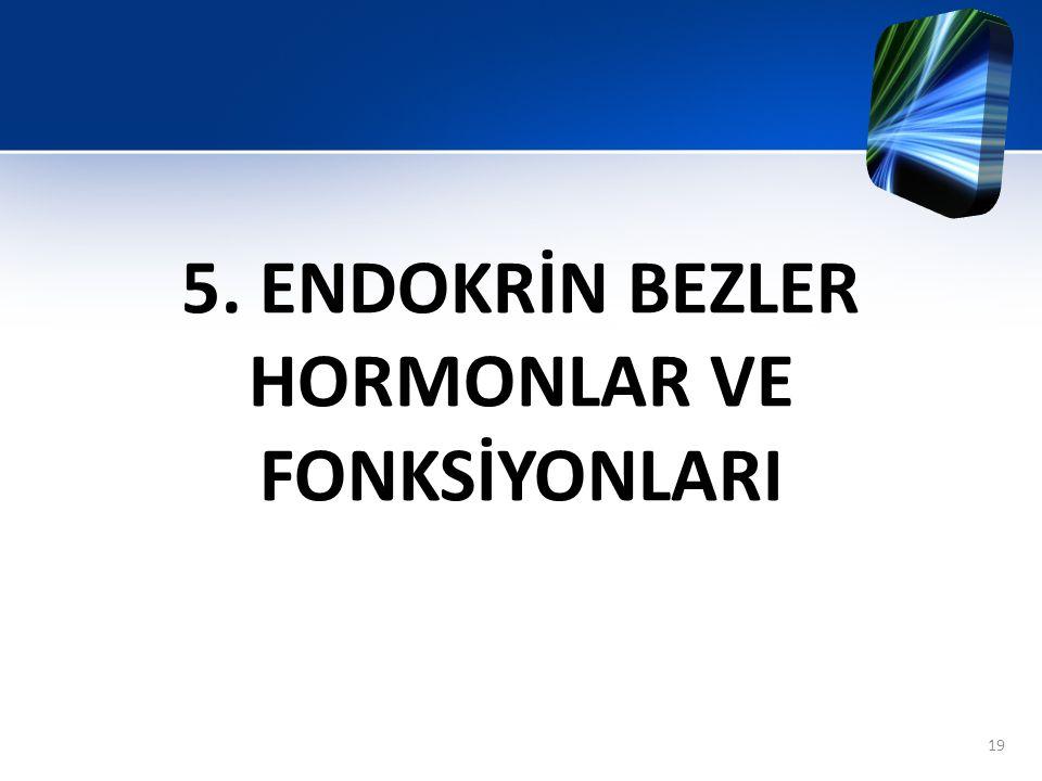 5. ENDOKRİN BEZLER HORMONLAR VE FONKSİYONLARI