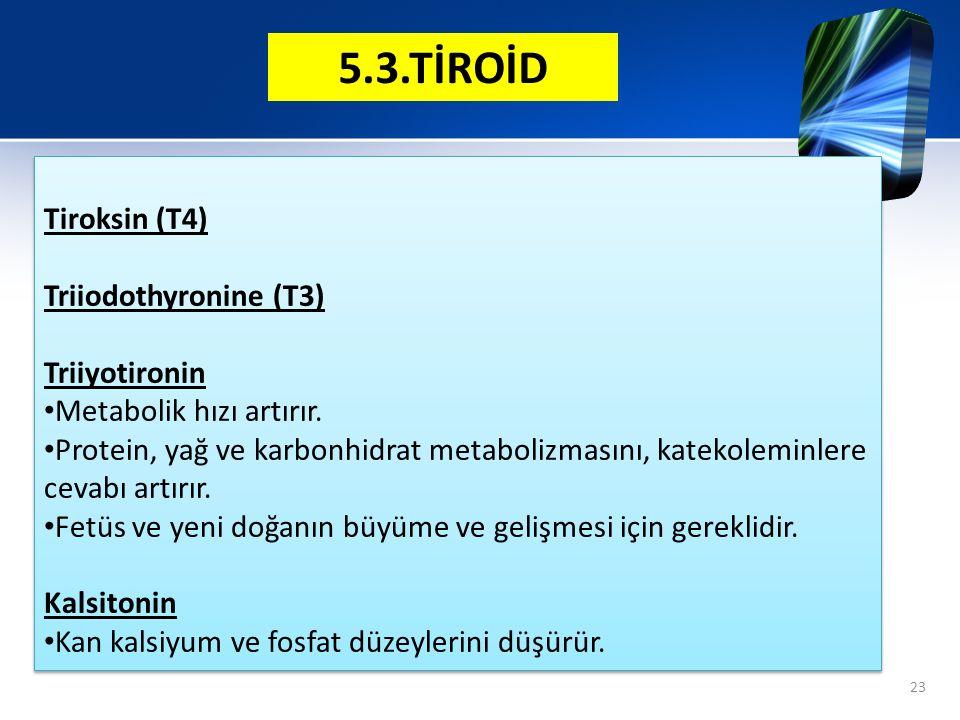 5.3.TİROİD Tiroksin (T4) Triiodothyronine (T3) Triiyotironin