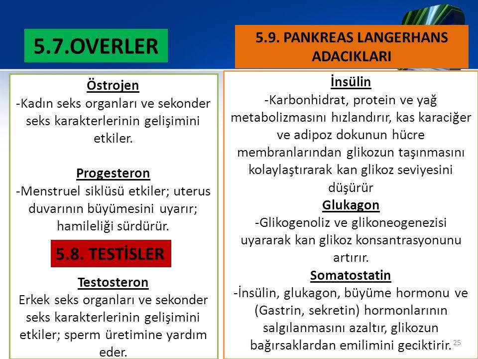 5.9. PANKREAS LANGERHANS ADACIKLARI