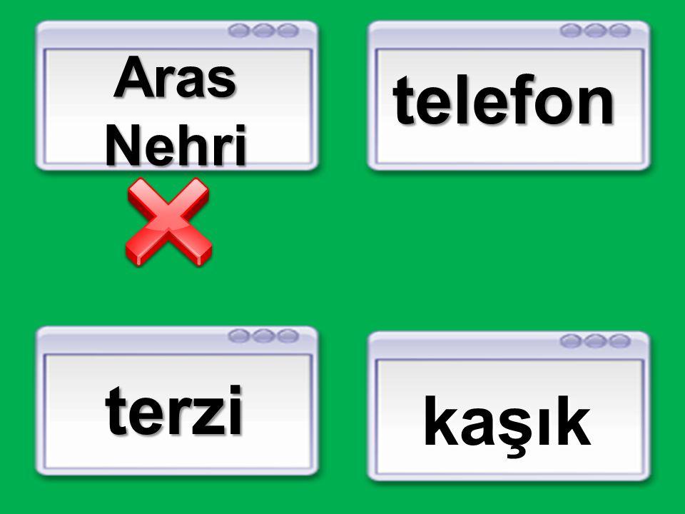 Aras Nehri telefon terzi kaşık