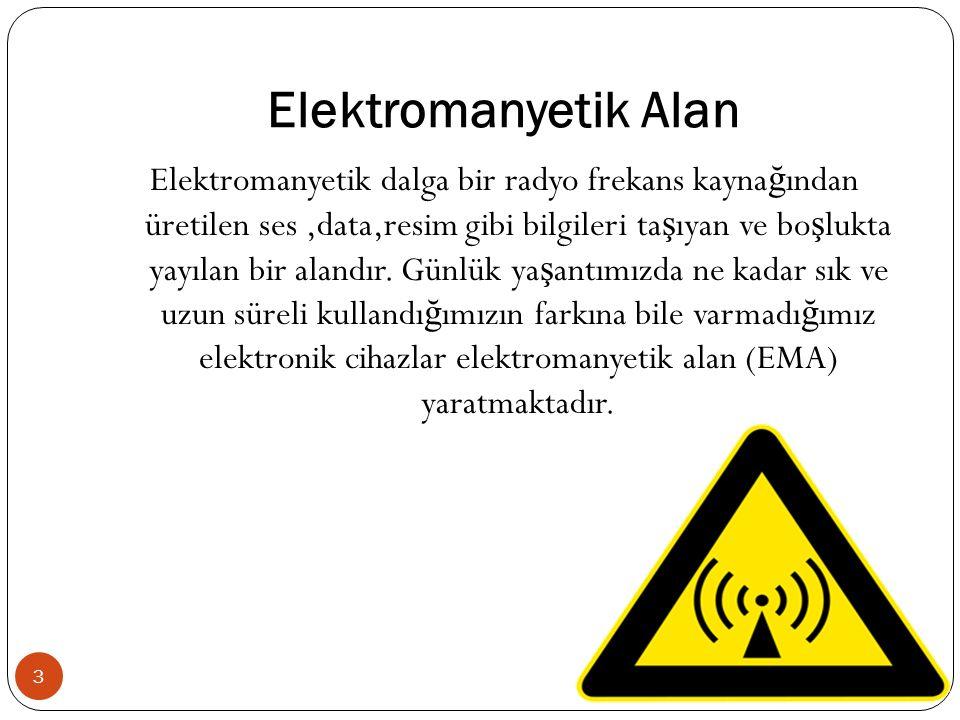 Elektromanyetik Alan