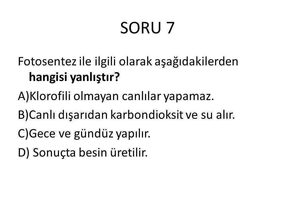 SORU 7 Fotosentez ile ilgili olarak aşağıdakilerden hangisi yanlıştır