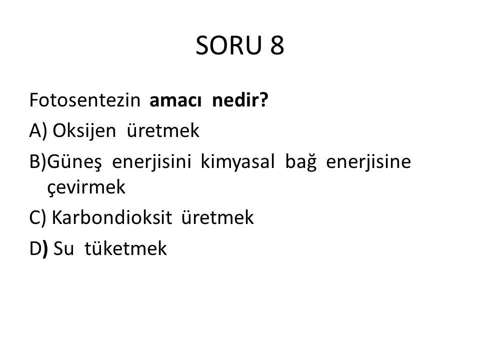 SORU 8 Fotosentezin amacı nedir A) Oksijen üretmek