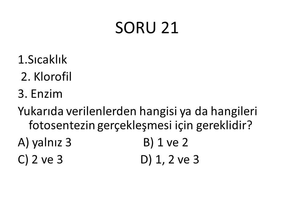 SORU 21 1.Sıcaklık 2. Klorofil 3. Enzim