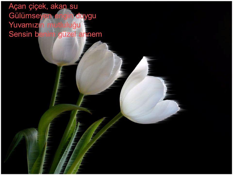 Açan çiçek, akan su Gülümseyen engin duygu Yuvamızın mutluluğu Sensin benim güzel annem