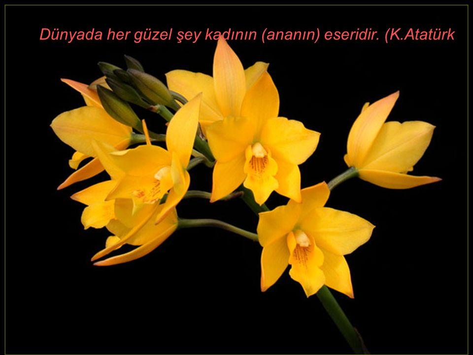 Dünyada her güzel şey kadının (ananın) eseridir. (K.Atatürk)