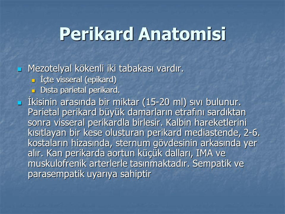 Perikard Anatomisi Mezotelyal kökenli iki tabakası vardır.
