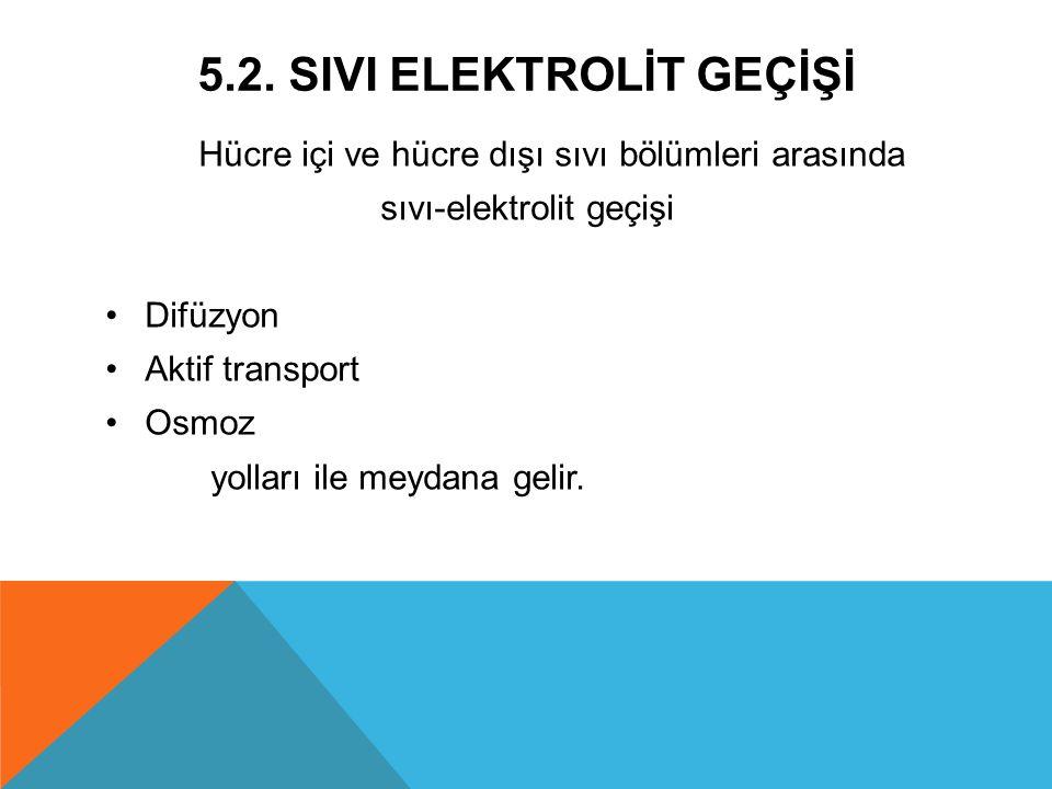 5.2. SIvI Elektrolİt GeÇİŞİ