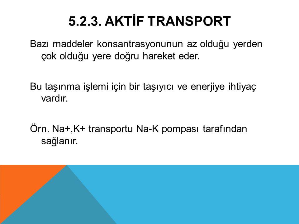 5.2.3. AKTİF TRANSPORT Bazı maddeler konsantrasyonunun az olduğu yerden çok olduğu yere doğru hareket eder.