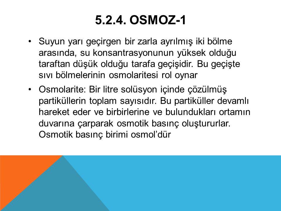 5.2.4. OSMOZ-1