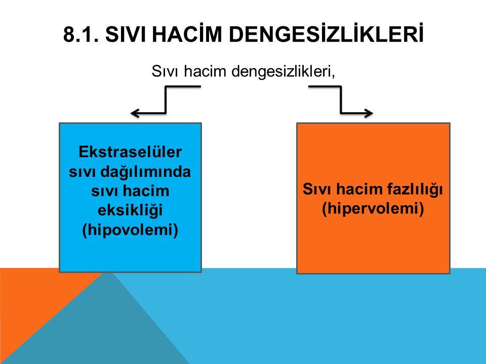 8.1. SIVI HACİM DENGESİZLİKLERİ