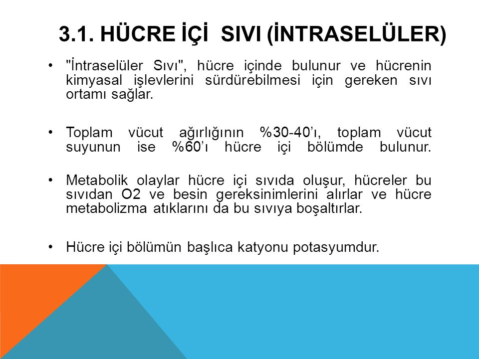3.1. hücre İÇİ SIVI (İntraselüler)
