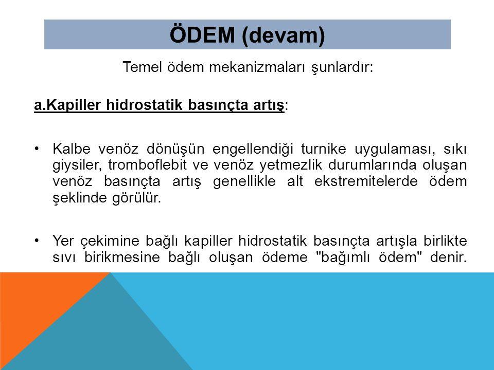 Temel ödem mekanizmaları şunlardır: