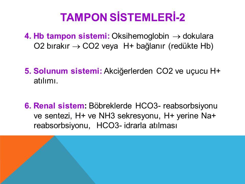 TAMPON SİSTEMLERİ-2 4. Hb tampon sistemi: Oksihemoglobin  dokulara O2 bırakır  CO2 veya H+ bağlanır (redükte Hb)