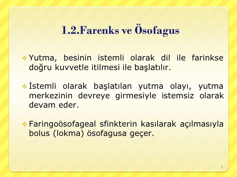 1.2.Farenks ve Ösofagus Yutma, besinin istemli olarak dil ile farinkse doğru kuvvetle itilmesi ile başlatılır.
