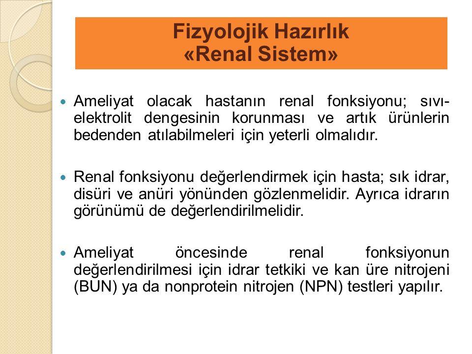 Fizyolojik Hazırlık «Renal Sistem»