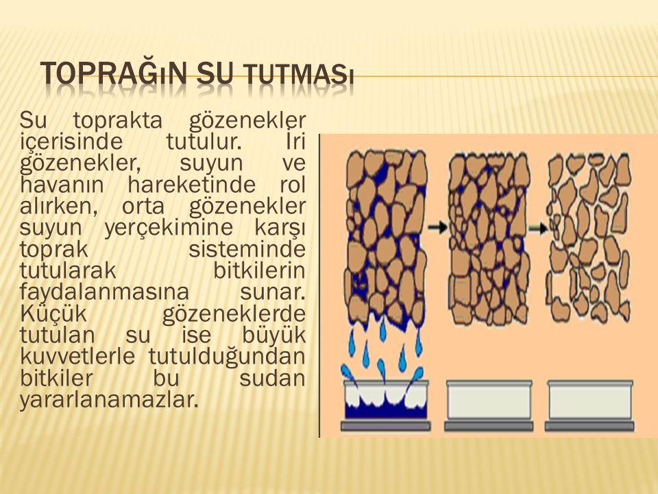 Toprağın Su Tutması