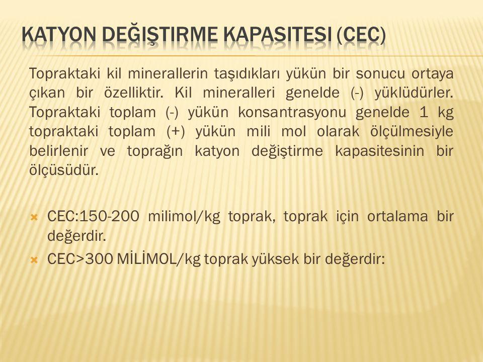 Katyon Değiştirme Kapasitesi (CEC)