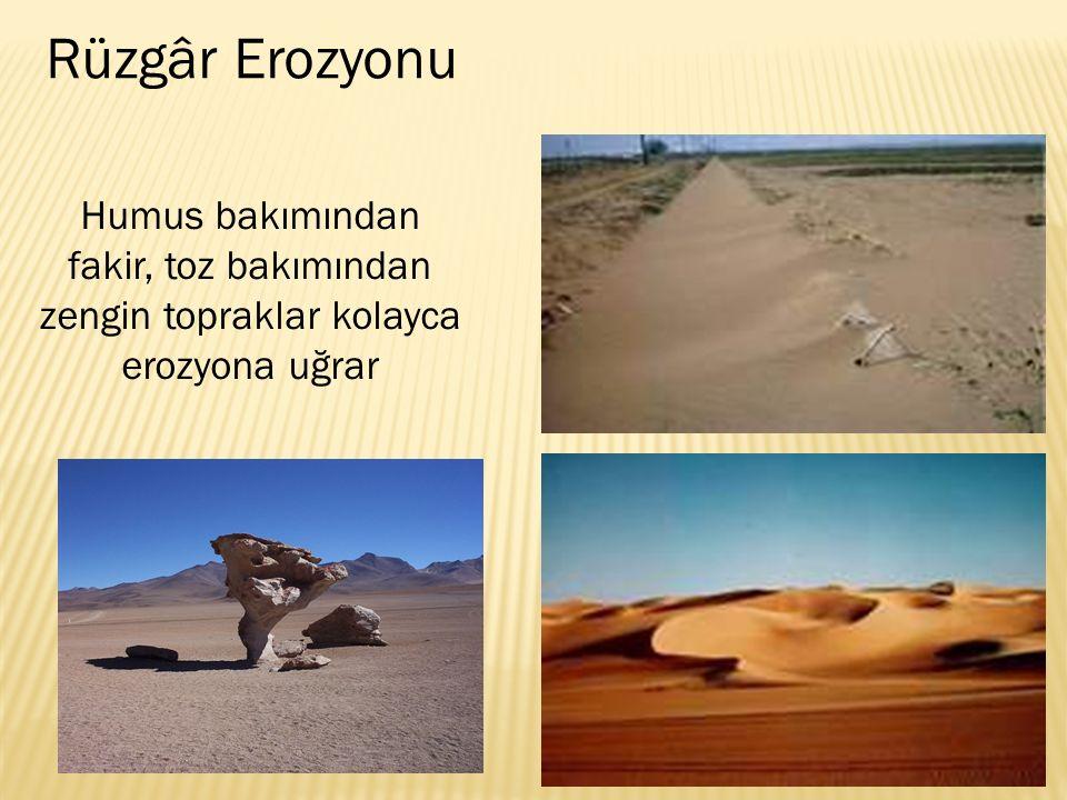 Rüzgâr Erozyonu Humus bakımından fakir, toz bakımından zengin topraklar kolayca erozyona uğrar