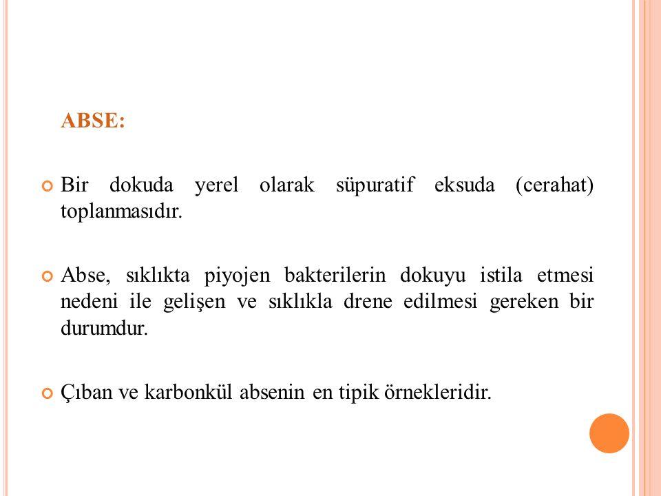 ABSE: Bir dokuda yerel olarak süpuratif eksuda (cerahat) toplanmasıdır.