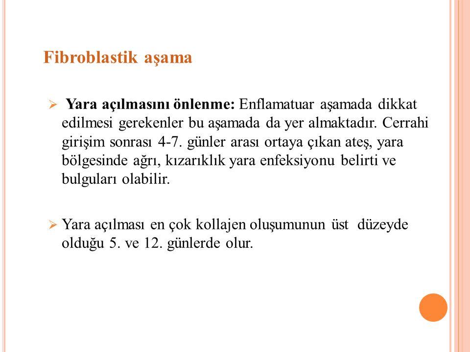Fibroblastik aşama