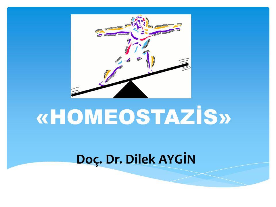«HOMEOSTAZİS» Doç. Dr. Dilek AYGİN