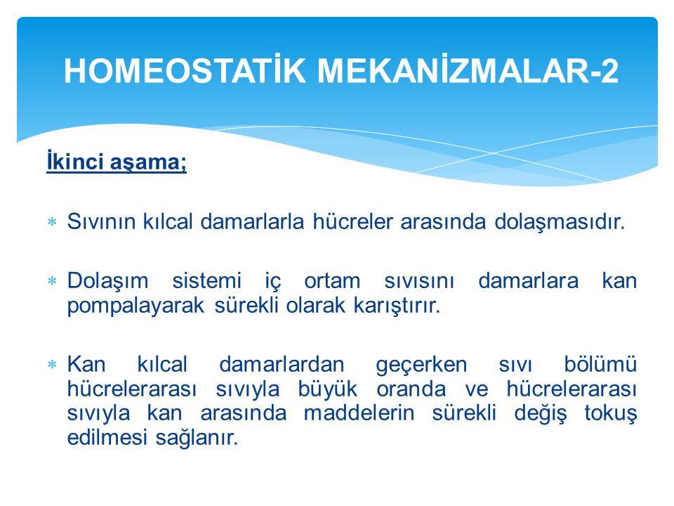 HOMEOSTATİK MEKANİZMALAR-2