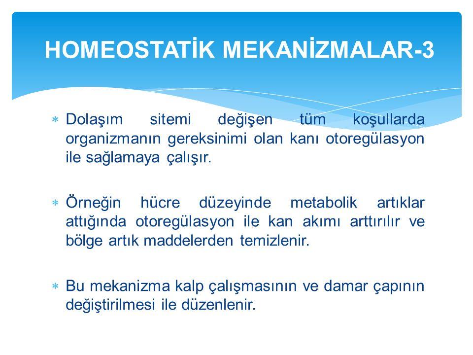 HOMEOSTATİK MEKANİZMALAR-3
