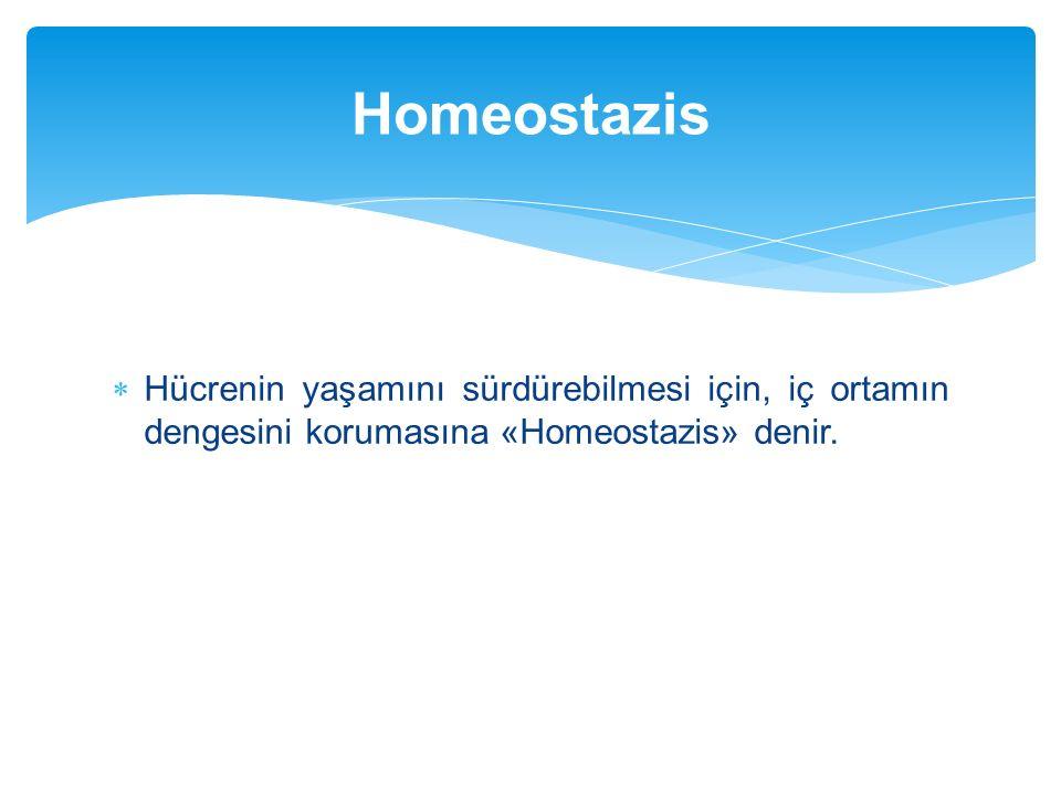 Homeostazis Hücrenin yaşamını sürdürebilmesi için, iç ortamın dengesini korumasına «Homeostazis» denir.