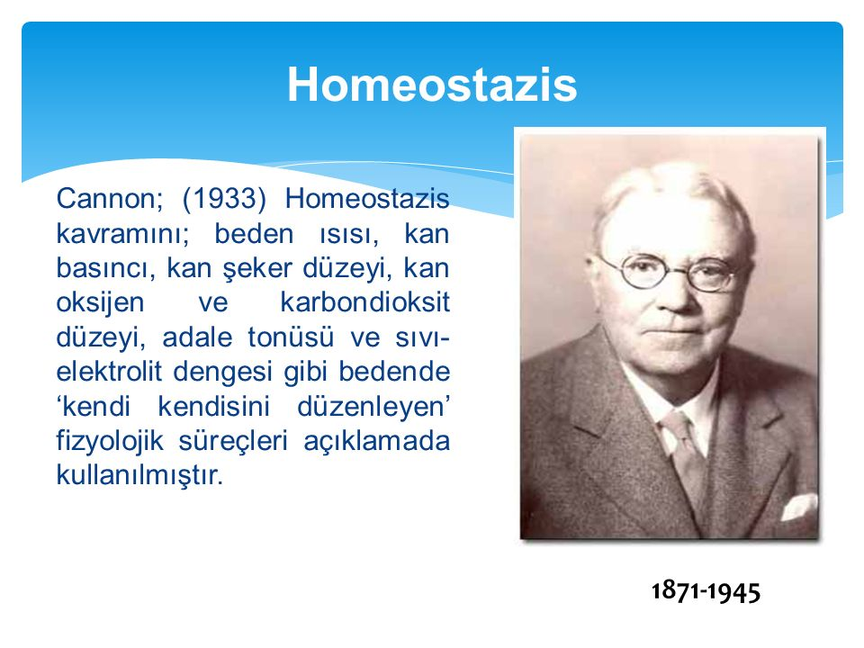 Homeostazis