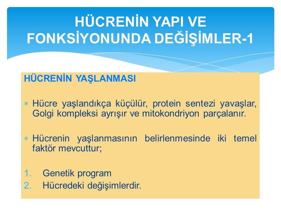 HÜCRENİN YAPI VE FONKSİYONUNDA DEĞİŞİMLER-1
