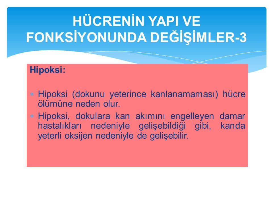HÜCRENİN YAPI VE FONKSİYONUNDA DEĞİŞİMLER-3