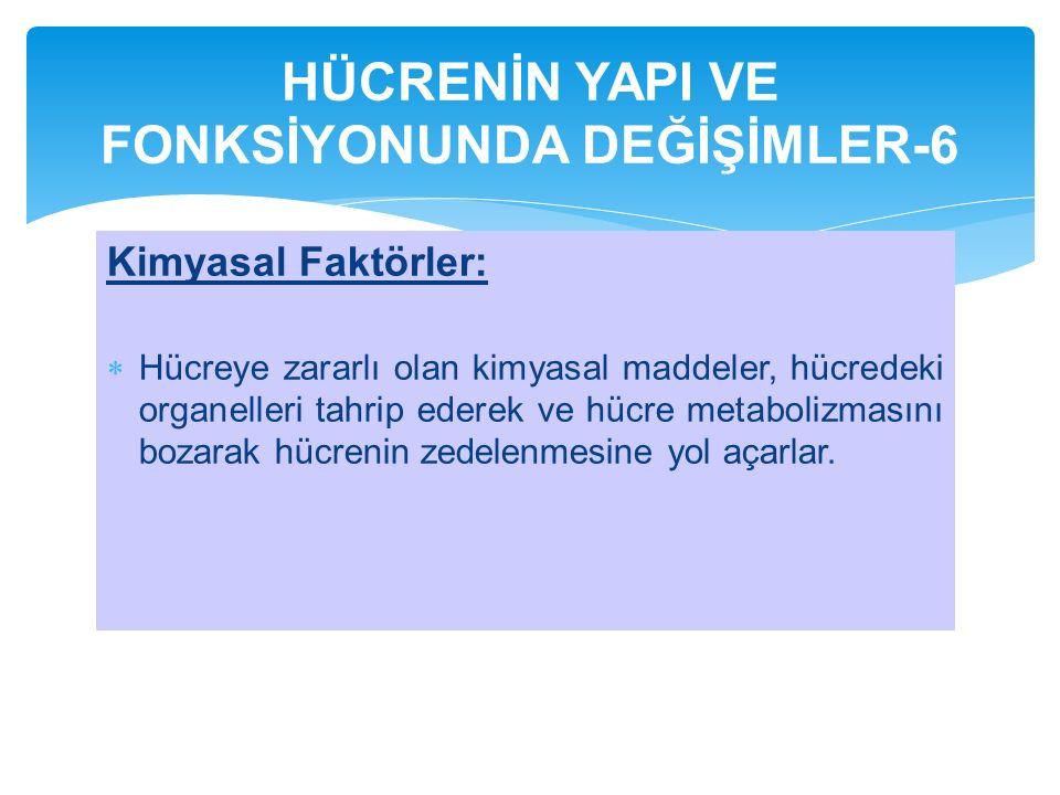 HÜCRENİN YAPI VE FONKSİYONUNDA DEĞİŞİMLER-6