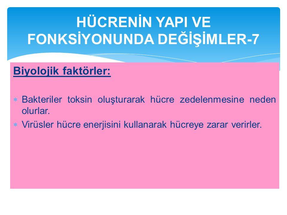 HÜCRENİN YAPI VE FONKSİYONUNDA DEĞİŞİMLER-7