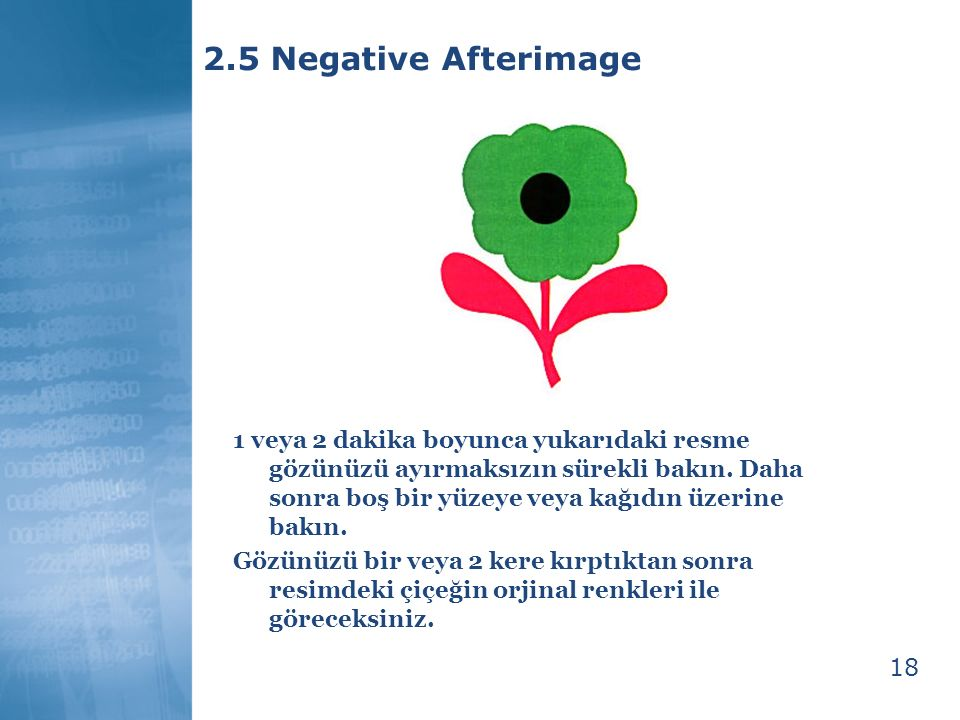2.5 Negative Afterimage